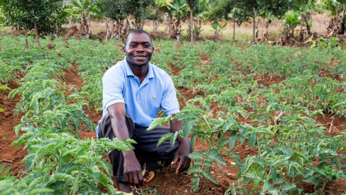 The Fund's investments create opportunities for small family-run farms to increase their incomes and improve their livelihoods. The AACF portfolio companies do so by creating jobs and positively affecting businesses related to farmers. The portfolio companies also contribute to the local and national economies.