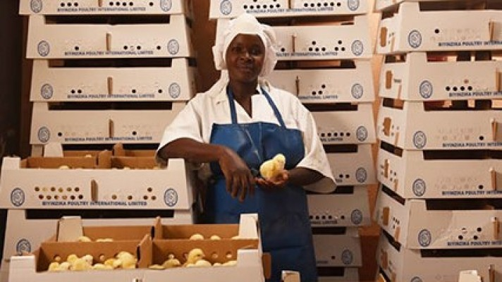 The Fund's key theme is food production and it targets this opportunity by focusing on three sectors: primary (farms and plantations); secondary (processing and animal feeds); and services/infrastructure (storage, fertilizers, chemicals, packaging and other inputs). The strategy includes building integrated businesses to control the agri-supply chain.